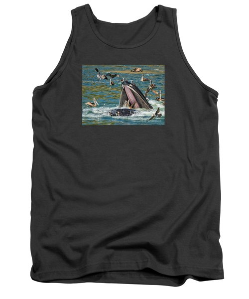 Whale Almost Eating A Pelican Tank Top by Alice Cahill