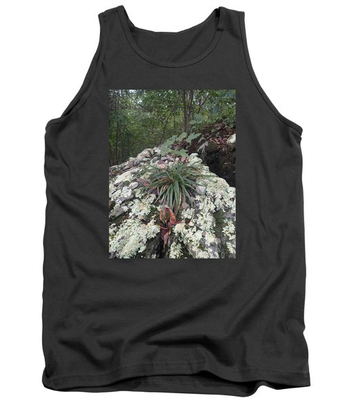 White Lichen Tank Top by Robert Nickologianis
