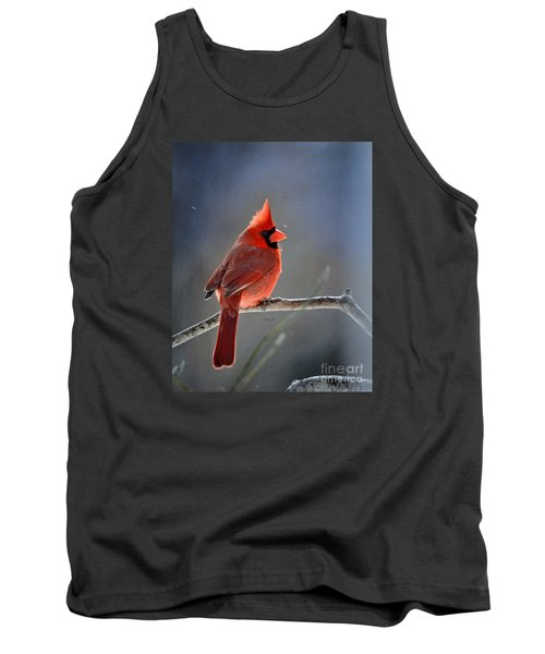Winter Morning Cardinal Tank Top by Nava Thompson
