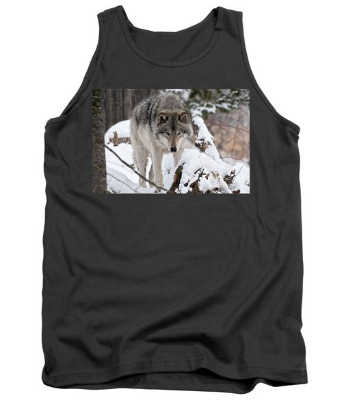 Tank Top featuring the photograph Winter Timber Wolf by Wolves Only