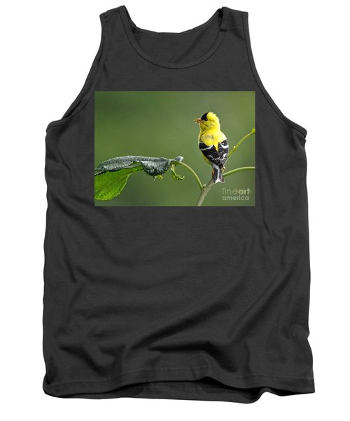Tank Top featuring the photograph Yellow Finch by Nava Thompson