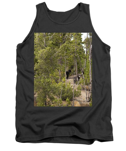 Yellowstone Wolves Tank Top by Belinda Greb