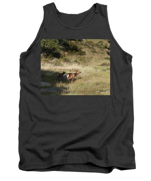Young Bull Elk Tank Top