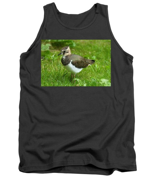 Young Lapwing Tank Top