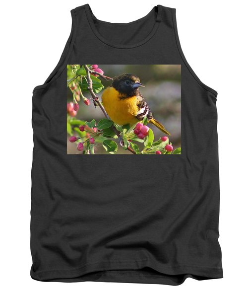 Young Male Oriole Tank Top by Bruce Bley