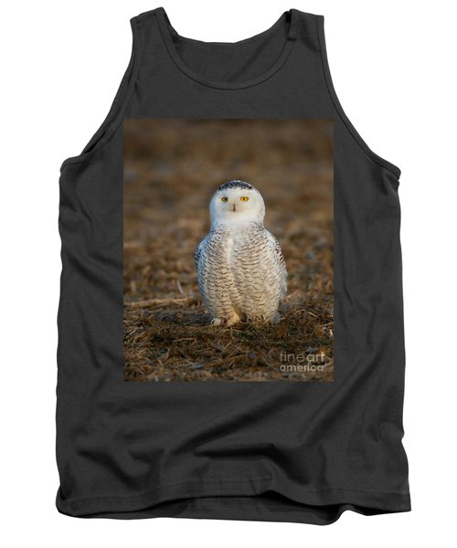 Young Snowy Owl Tank Top
