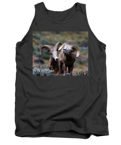 Tank Top featuring the photograph Smile by Steve McKinzie