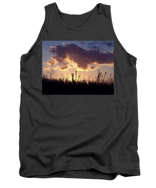 Summer Sunset Tank Top by Lauren Radke