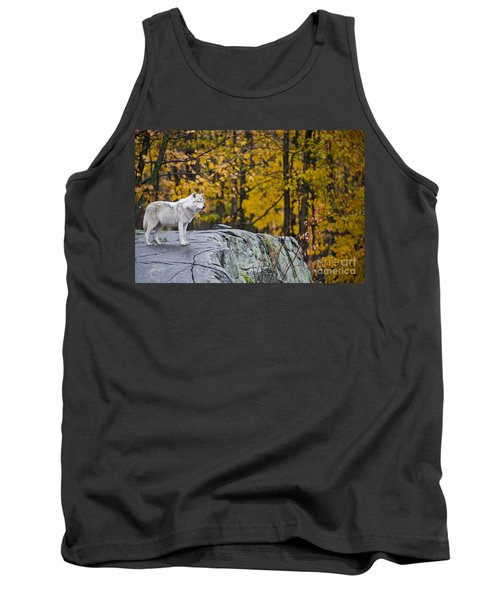 Arctic Wolf Tank Top by Michael Cummings