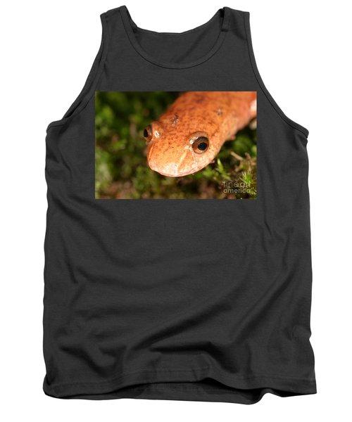 Spring Salamander Tank Top by Ted Kinsman