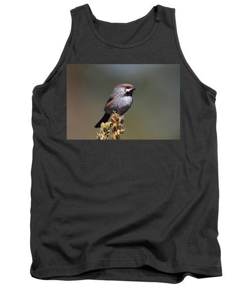 Boreal Chickadee Tank Top