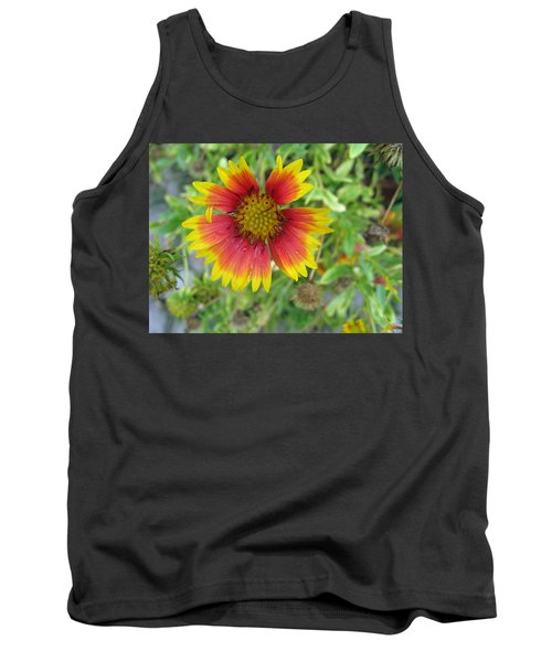 Tank Top featuring the photograph A Beautiful Blanket Flower by Ashish Agarwal