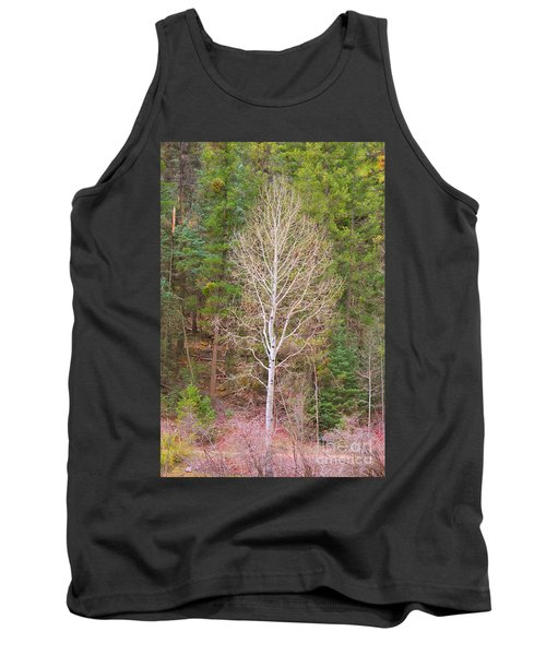 Aspen Tree Forest Road 249 Tank Top