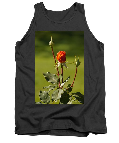 Tank Top featuring the photograph Autumn Rose by Mick Anderson