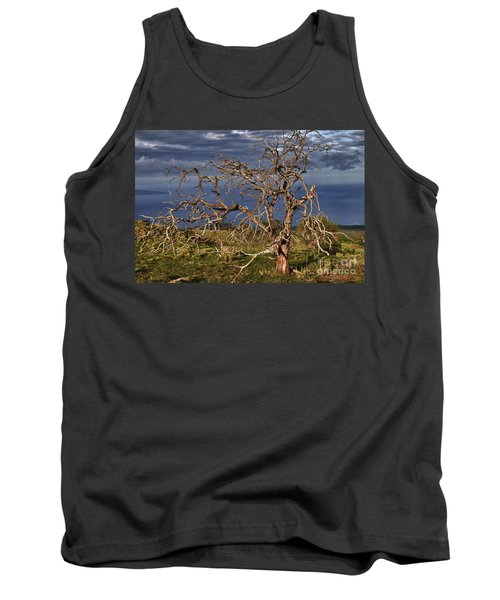 Bare Tree In Hana Maui Tank Top