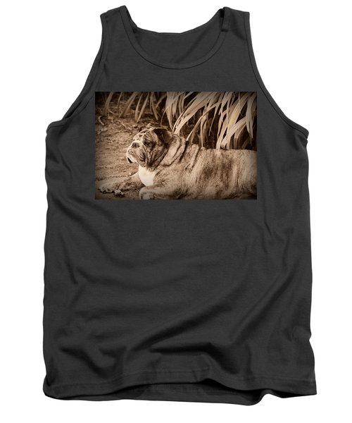 Tank Top featuring the photograph Baydie by Jeanette C Landstrom