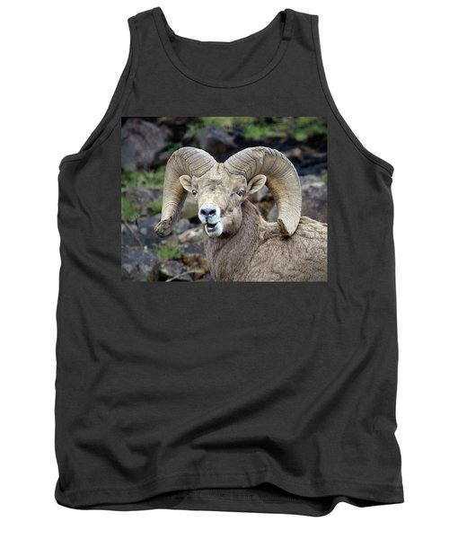 Tank Top featuring the photograph Bighorn Giant by Steve McKinzie