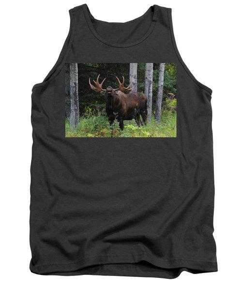 Tank Top featuring the photograph Bull Moose Flehmen by Doug Lloyd