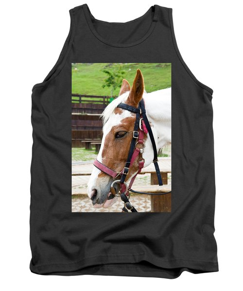 Tank Top featuring the photograph Closeup Of Horse by Yew Kwang