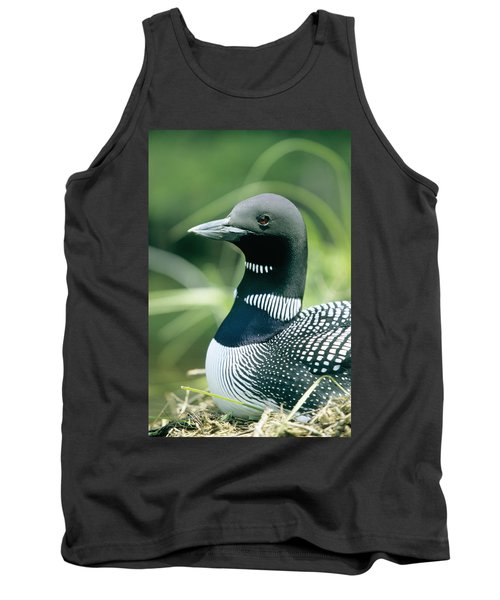 Common Loon, La Mauricie National Park Tank Top