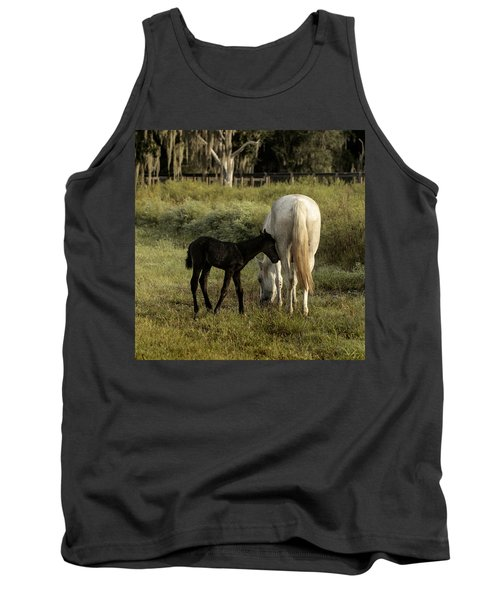 Cracker Foal And Mare Tank Top