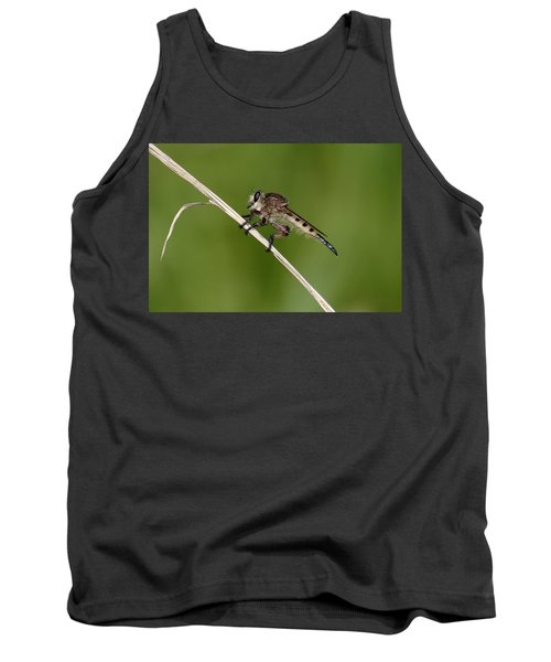 Giant Robber Fly - Promachus Hinei Tank Top by Daniel Reed