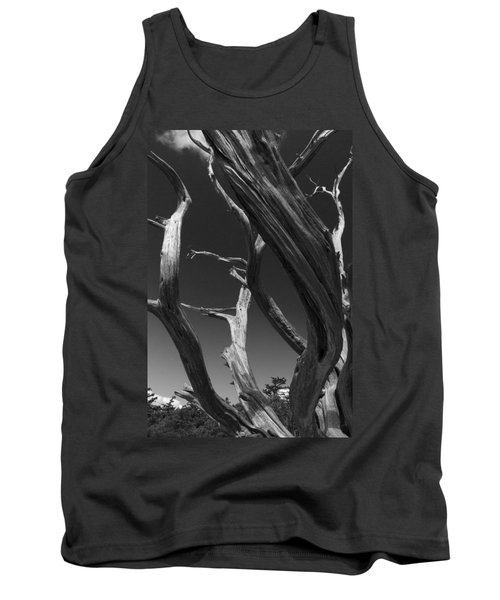 Tank Top featuring the photograph Lone Tree by David Gleeson