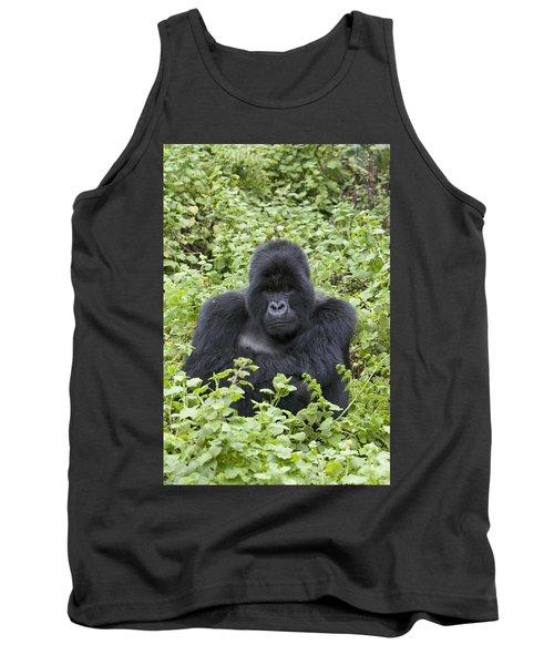 Mountain Gorilla Large Silverback Male Tank Top