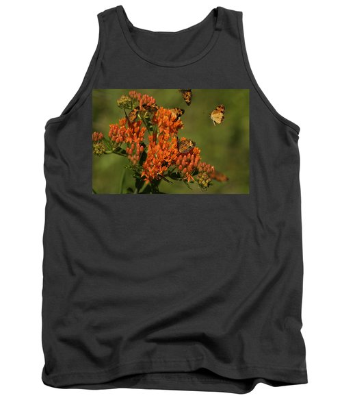 Pearly Crescentpot Butterflies Landing On Butterfly Milkweed Tank Top