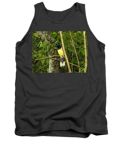 Tank Top featuring the photograph Plush-crested Jay by David Gleeson