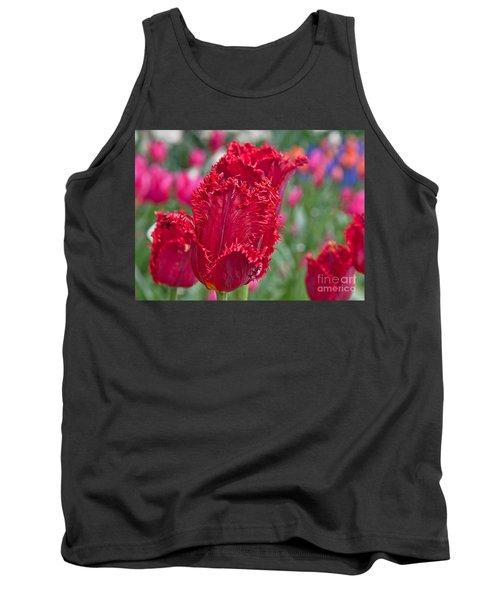 Red Fringed Tulip Flower Macro Art Prints Tank Top