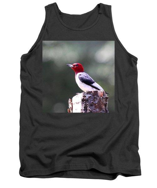 Red-headed Woodpecker - Statue Tank Top