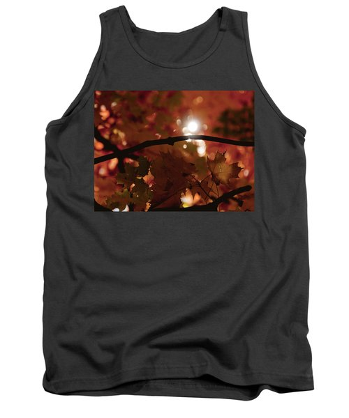 Tank Top featuring the photograph Spotlight On Fall by Cheryl Baxter