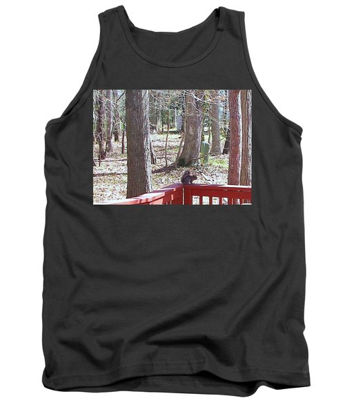 Tank Top featuring the photograph Squirrel Waiting by Pamela Hyde Wilson