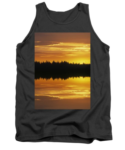 Sunset Over Boreal Forest, Medicine Tank Top