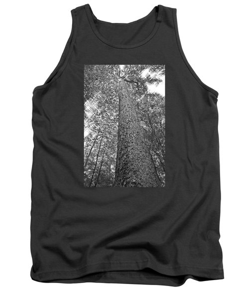 Tank Top featuring the photograph Tall Tree With Sunshine by Susan Leggett