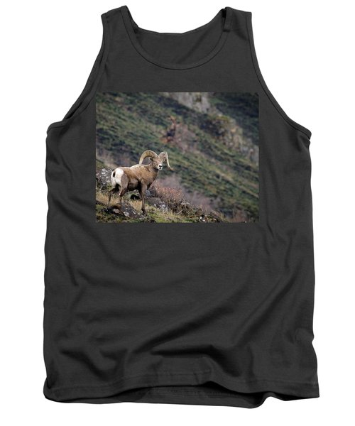 Tank Top featuring the photograph The Overlook by Steve McKinzie