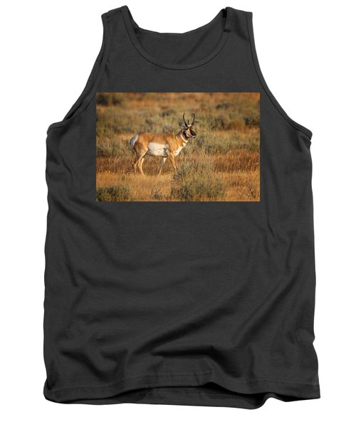 Wyoming Pronghorn Tank Top