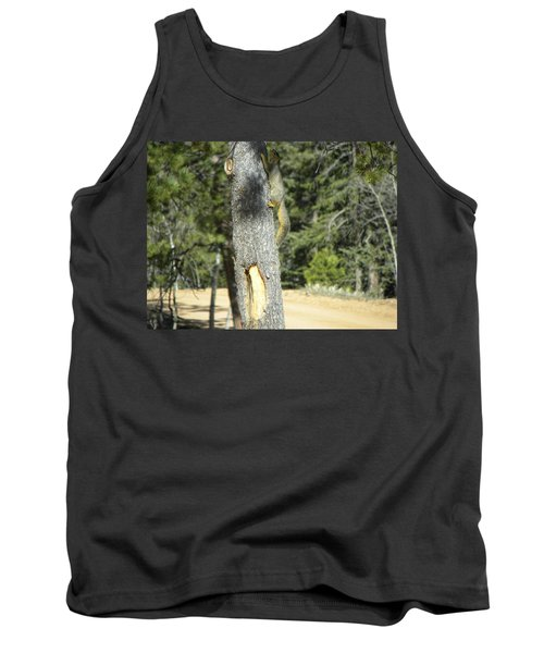 Squirrel Home Divide Co Tank Top