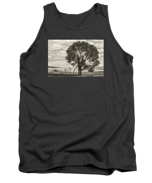 #0543 - Southwest Montana Tank Top