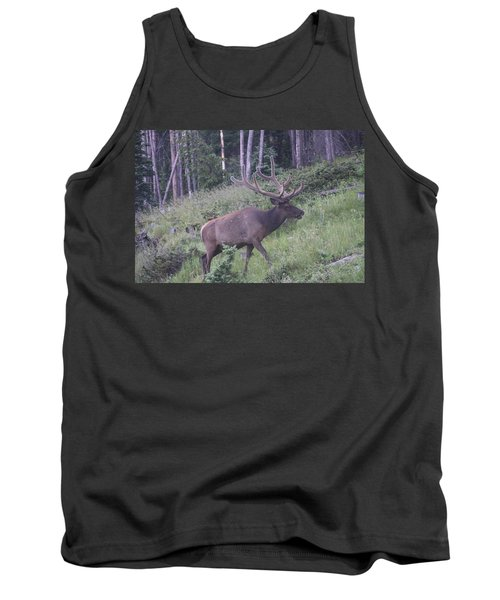 Bull Elk Rmnp Co Tank Top