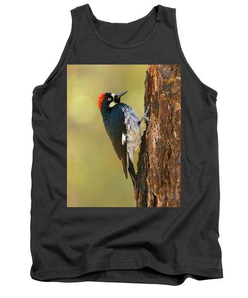 Acorn Woodpecker Tank Top
