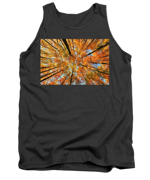 Beneath The Canopy Tank Top by Edward Kreis