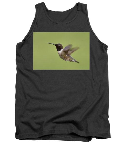 Black-chinned Hummingbird Tank Top