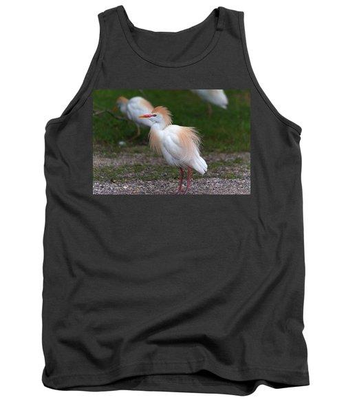 Cattle Egret Walking Close Tank Top