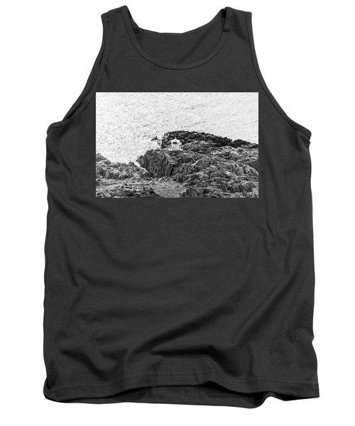 Cliffs At Kullaberg Tank Top