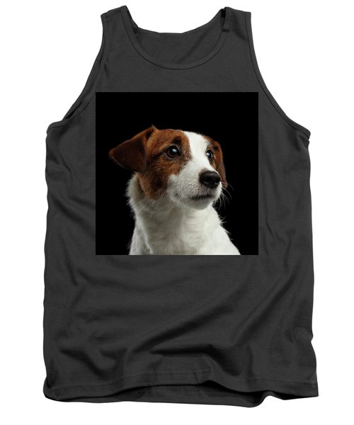 Closeup Portrait Of Jack Russell Terrier Dog On Black Tank Top
