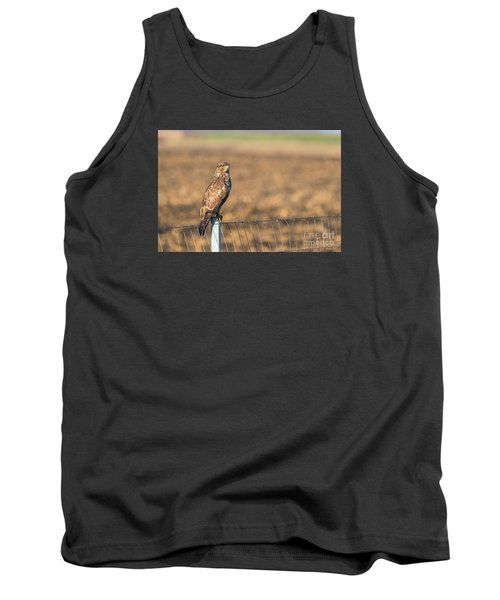 Tank Top featuring the photograph Common Buzzard Along The Highway Nis - Budapest by Jivko Nakev