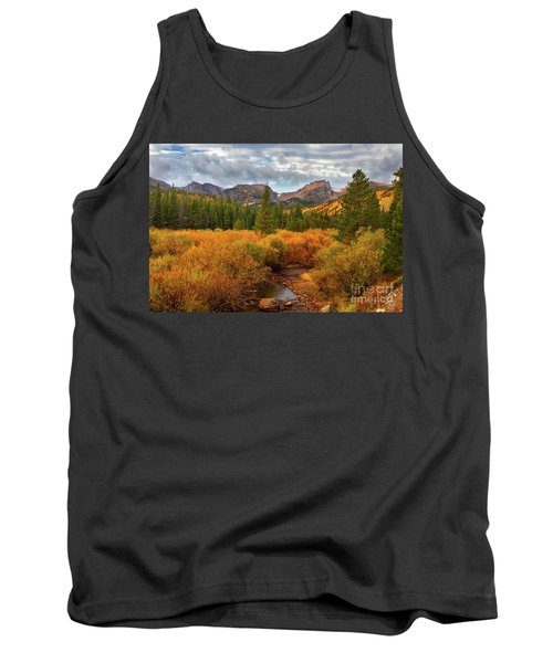 Fall In Rocky Mountain National Park Tank Top by Ronda Kimbrow
