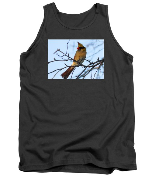 Tank Top featuring the photograph Female Northern Cardinal by Ricky L Jones